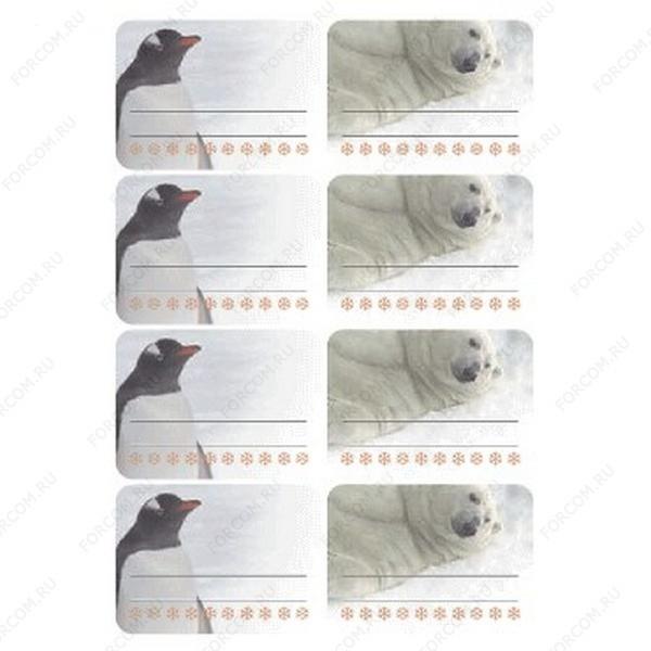 HERMA 3704 Vario Наклейки Для заморозки Пингвин